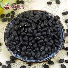Feijão preto 500-550pcs / 100g mercado de China na venda quente
