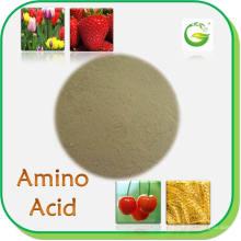 Fertilizantes orgánicos Aminoácidos en polvo