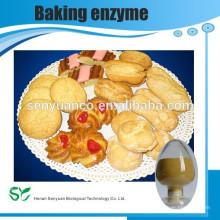 Soda Asche / Wasch-Natron und Natrium-Karbonat / Backpulver aus China Lieferanten