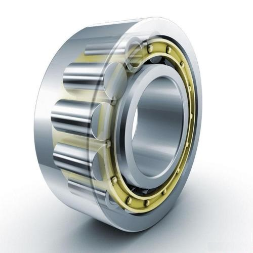 The Generator Bearings