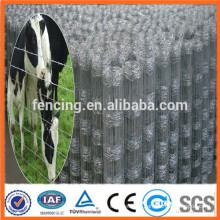 High pressure strength Grassland field fence(Professional Manufacturer)
