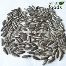 Wanted business partner of the sunflower seeds