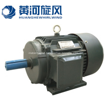 Self-starting Permanent Magnet Synchronous Motor
