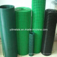 Maille métallique soudée revêtue de PVC en rouleau