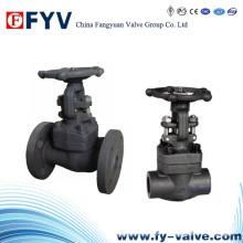 API602 F304L / F3016L Válvula de compuerta de acero forjado