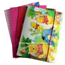 A4 Index Divider Twin Pocket Papier Datei Ordner für Ringbinder