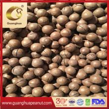 Hot Sale Raw Macadamia Fresh Macadamia Nut in Shell