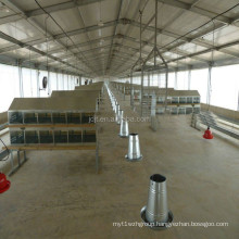 prefab chicken farm building AND poultry farm shed Steel structure of the henhouse