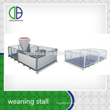 Raising Equipment Pig Weaning Stall Livestock Piglet Nursery Crate