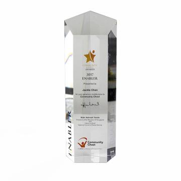 Bloc trophée acrylique transparent cadeau personnalisé APEX