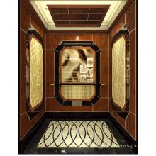 Passenger Elevator Lift High Quality Mirror Etched Aksen Ty-K119