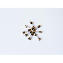 Verrouillage du tube de verre Certificat PSE temps-retard 5X20 mm