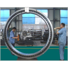 China Lieferant Low Price Schwenklager für Kran Kdlh. U. 1355.00.10