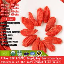 Baga de Goji orgânico medicinal / Ningxia secou a baga de Goji