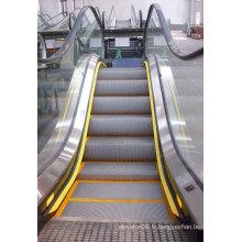 Aksen Escalator Intérieur et Extérieur Type de Porte Aluminium