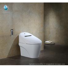 Salle de bains contemporaine Allongée Une pièce en céramique Intelligent toilette prix