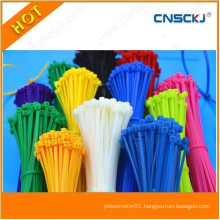 Zhejiang UL Nylon Cable Tie Price Low Cable Zip Tie