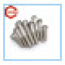 Ss304 DIN 603 Carriage Bolt /DIN603 Round Head Square-Neck Bolt