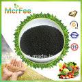 Hot Sale Humic Acid Organic Slow Release Fertilizer for Sale