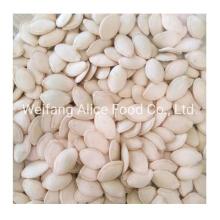 China Factory Price Shine Skin Pumpkin Seeds Cheap Pumpkin Seeds 10mm+