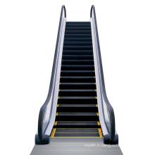 Aksen Escalator Indoor Type 35 Degree