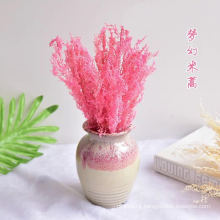 Factory price dried edible cheap dried flowers dried pressed flowers