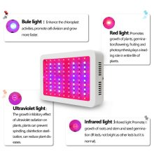 Greenhouse LED Plant Grow Light