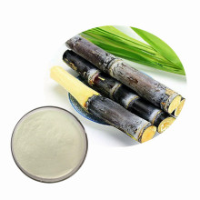 High quality sugarcane powder with more benefit