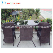 Patio Dining Furniture Garden Rattan Dining Table with Glass (CF1245)