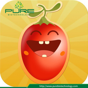 Goji berry free pesticide taste juicy