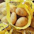 Exportieren Sie Standard New Crop Potato