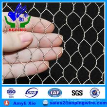 Maillage hexagonal galvanisé au fil de poulet