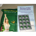 Lida Meizi Evolution Super Extreme Slimming Pills (MJ-30 PILLS)