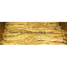 High Quality Low Pesticide White Ginseng Root & Red Ginseng Root