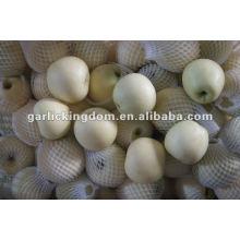138-198 18kg Golden Delicious Manzanas de Origen