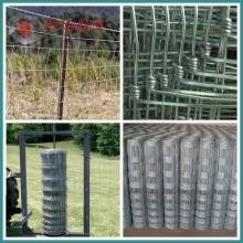 Galvanized Wire Mesh Fencing for Farm