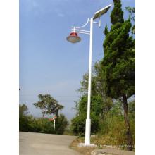 Brsgl113 Efficiency LED Solar Garden Light