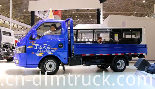 Dongfeng light truck (6)