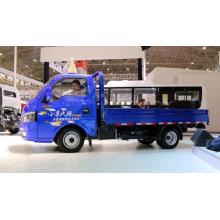Camión ligero de gasolina Dongfeng 4X2