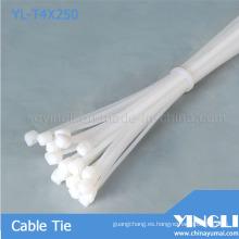 Bridas de Nylon plástico (YL-T4X250)