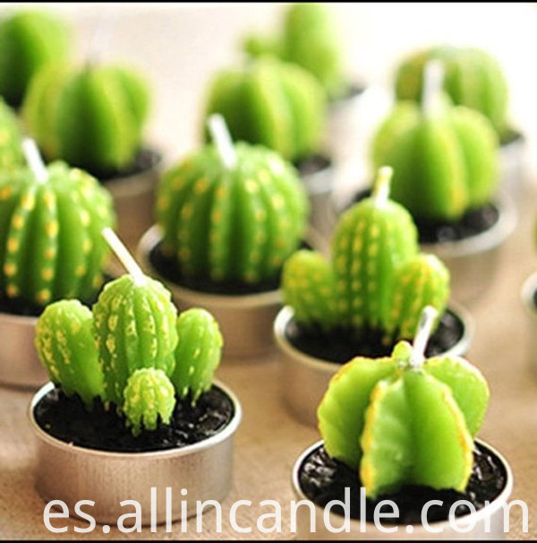 Cactus Candle 3