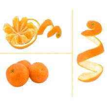 Chinois frais de bonne qualité mandarine