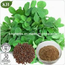 High Quality Fenugreek Seed Extract, Fenugreek Saponins 50%; 4-Hydroxyisoleucine 1%-20%