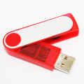 Hot Plastic Swivel 2GB USB-Stick