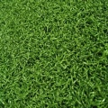 UV Resistance 20 mm Putting Green