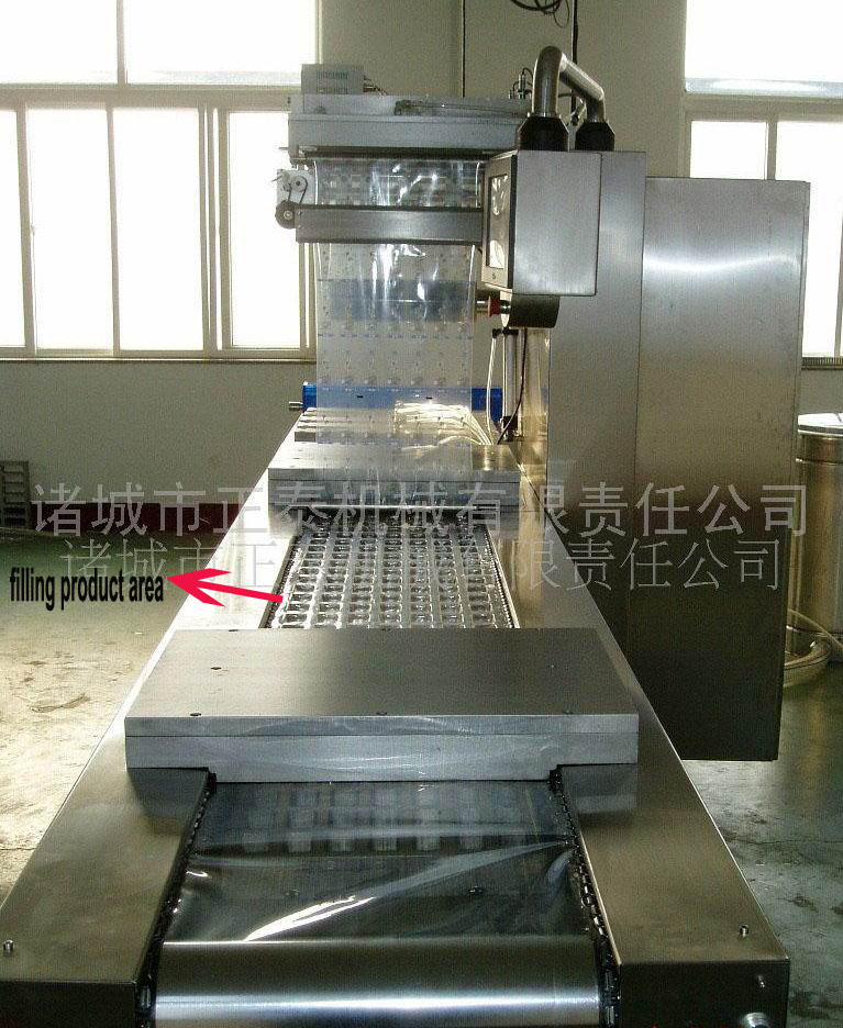 Fully Auto Lump Meat Packer Machine