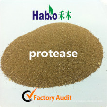Habio Feed Neutural Protease for Animal Feeding and Hea; th