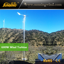 China Camping Wind Turbine Generator for Wind Solar Power System (MAX 600W)