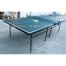 Table Tennis Table DTT9024