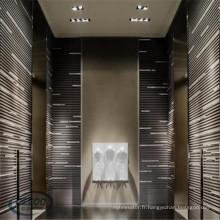 Ascenseurs de luxe